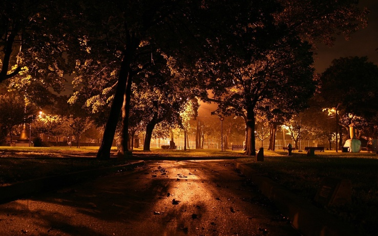 1505783-trees,cityscapes,orange,parks,yard.jpg