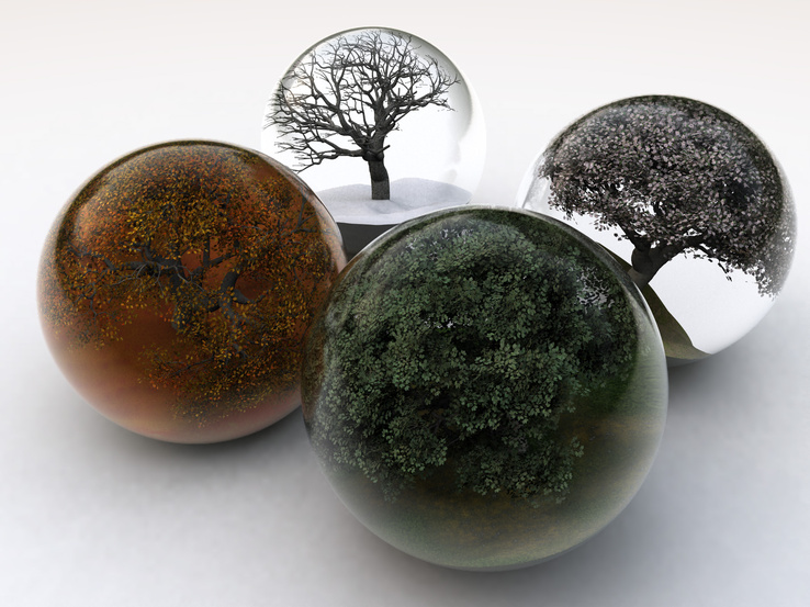 619264-winter,trees,autumn,glass,seasons,summer,balls,spring,white background.jpg
