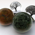 619264-winter,trees,autumn,glass,seasons,summer,balls,spring,white background