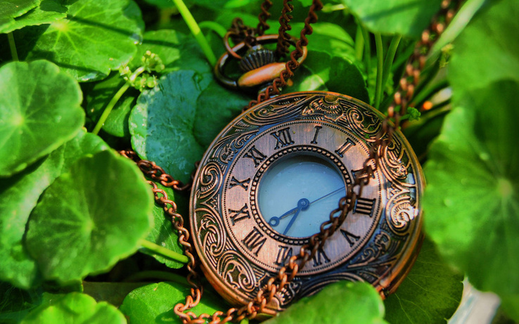 1381941-leaves,pocket watch,watches.jpg