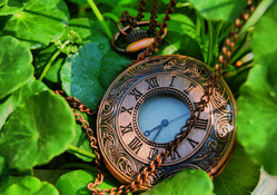 1381941-leaves,pocket watch,watches