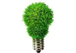 1386579-white background,green,energy,bulbs,3D