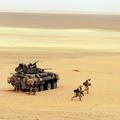 247757-soldiers,military,desert