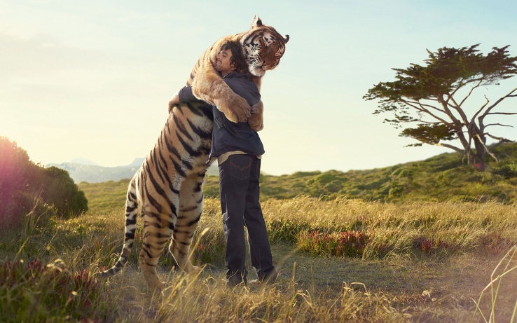1728192-pants,nature,jeans,love,Sun,animals,tigers,wildlife,men,long hair,jackets,hug,denim clothing.jpg