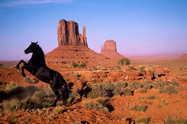 1746842-nature,animals,horses,rock formations.jpg