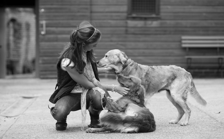 1804679-women,dogs,grayscale.jpg