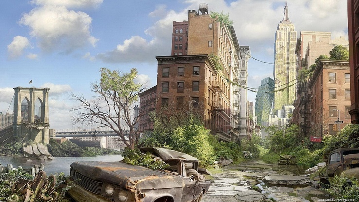 1799669-jungle,New York City,creative.jpg