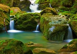 Yosunla kaplı kayalar ve şelale