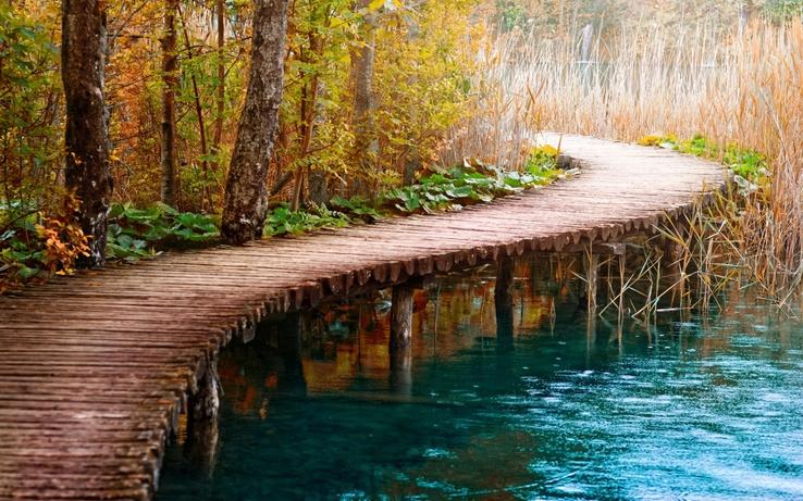 Göl kenarındaki tahta yol göl kenarındaki tahta yol