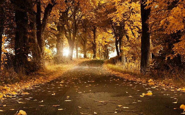 fall-wallpaper-25.jpg