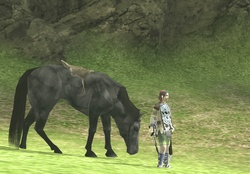 90648 shadow,of,the,colossus,agro,(horse),wander,(character),girls,with,horses